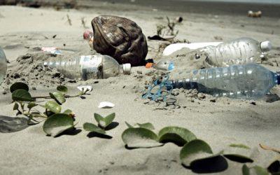 Moción para eliminar el uso de plásticos