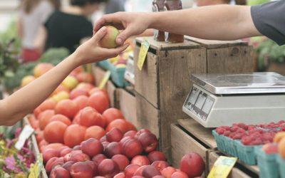 Ganemos solicita apoyar al pequeño comercio local de Palencia