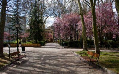 Ante la reforma del parque de los Jardinillos