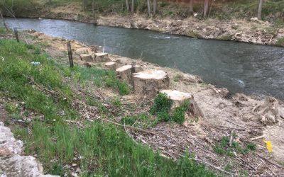 La tala prevista en el río Carrión no se ha aprobado en ningún órgano municipal