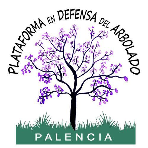 La Plataforma en Defensa del Arbolado de Palencia presenta alegaciones contra la modificación del PGOU
